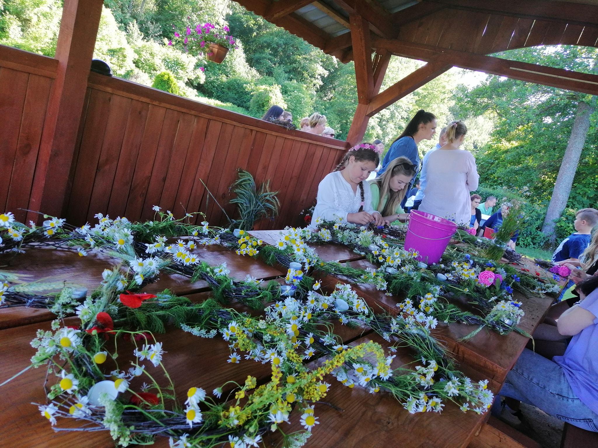 Ilustracja do informacji: W Szylinie znaleziono kwiat paproci